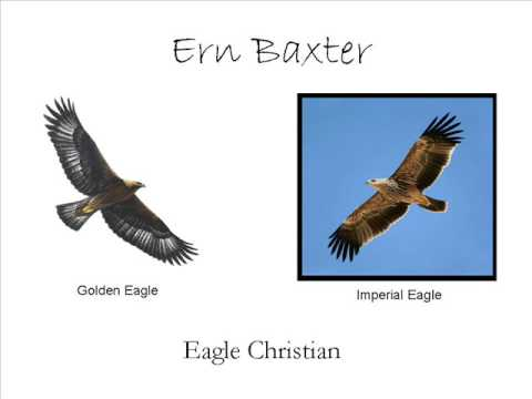 Ern Baxter:  Life onWings