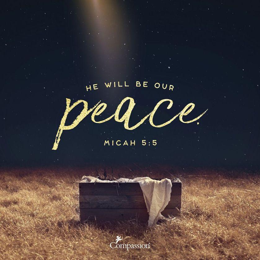 peace-a4-instagram-2-c